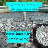 فروش زئولیت در استخر پرورش ماهی
