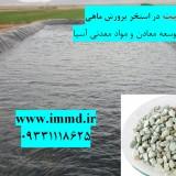 فروش ویژه تابستانی زئولیت استخرهای پرورش ماهی